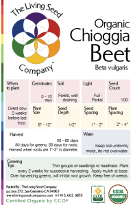 Chioggia Front Packet