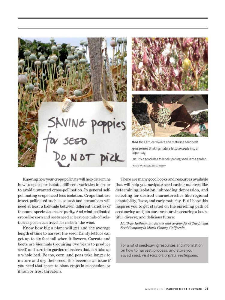 Pacific Horticulture Seed Saving_Page_3